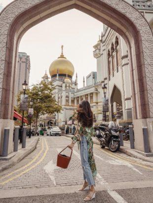 My Trip to Singapore and Vietnam